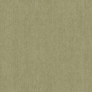 DW8517 - Keukenwand Staal