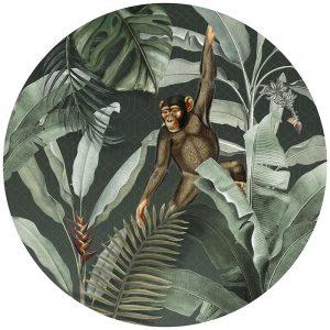 Muurcirkel - Vintage Monkey Green